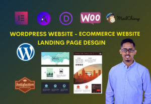 19882I will create Any Professional WordPress website