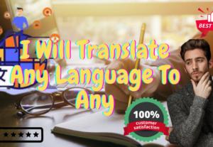 255791I Will Translate Any Language To Any
